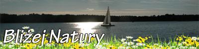 baner-bnatury