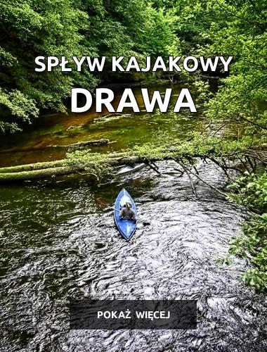 baner-drawa